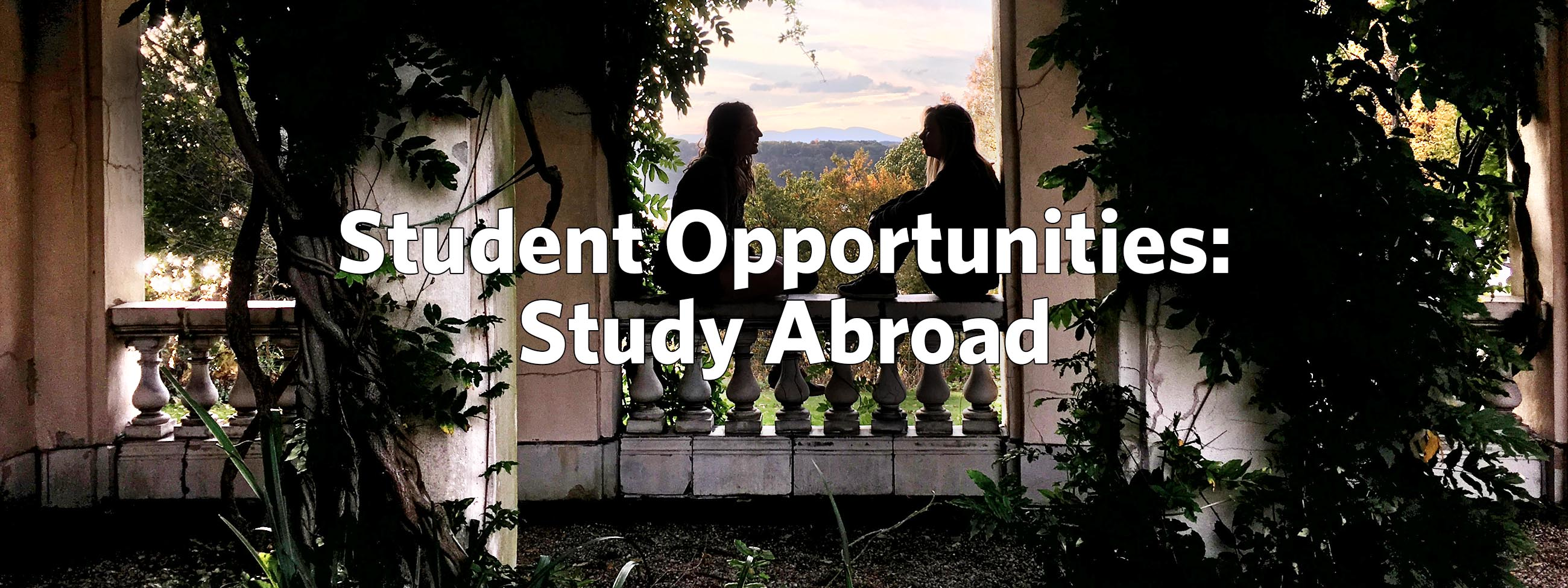 Main Image for Study abroad